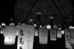 311_photo09