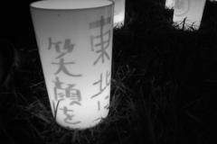311_photo14