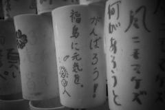 311_photo16