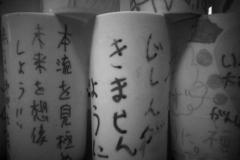 311_photo17