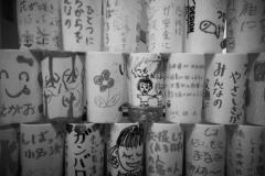 311_photo19