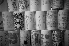 311_photo20